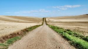 Cammino-di-Santiago-